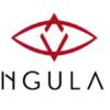 Thumb singulardtv logo gross